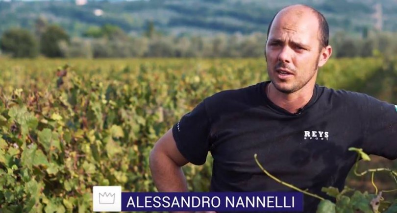 INTO THE WINE: in vigna con Alessandro